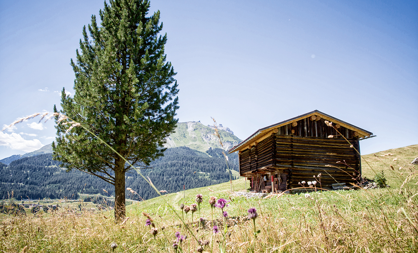 Gadäwäg Klosters